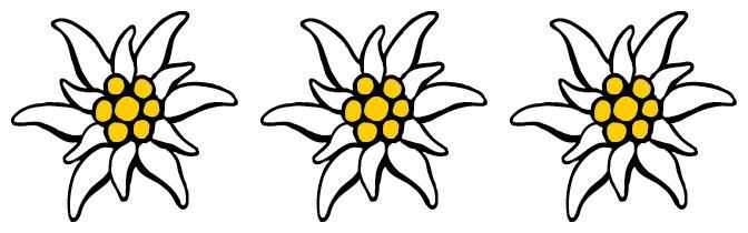 Bildergebnis für edelwei� symbol